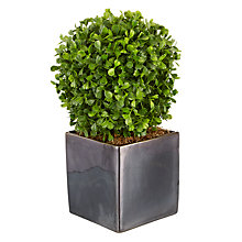 Buy Standard Boxwood Artificial Topiary Online at johnlewis.com