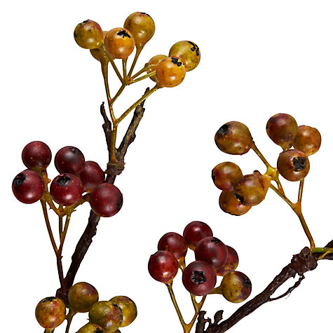 Buy Berry Single Stem, Green/ Yellow Online at johnlewis.com