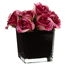 Buy Roses in a Cube, Dark Pink, Large Online at johnlewis.com