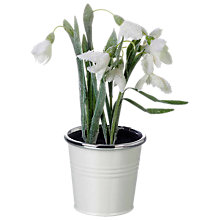 Buy Parlane Artificial Potted Snowdrops Online at johnlewis.com