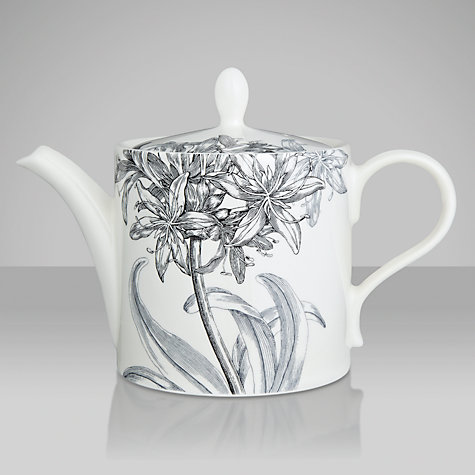 Buy Portmeirion Agapanthus Teapot Online at johnlewis.com
