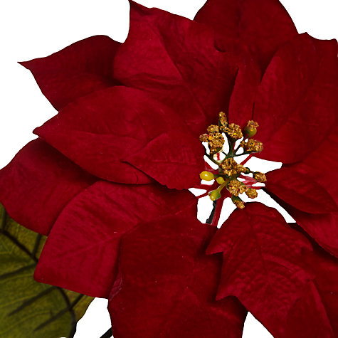 Buy Floral Silk Velvet Poinsettia, Red Online at johnlewis.com