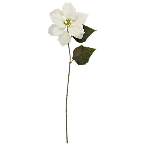 Buy Floral Silk Velvet Poinsettia, White Online at johnlewis.com