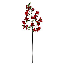 Buy Floral Silk Velvet Dogwood Spray Online at johnlewis.com