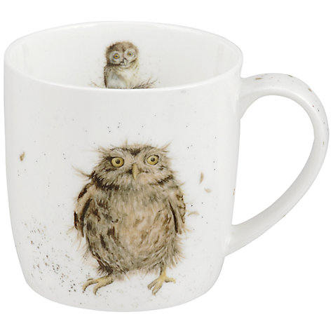 Buy Royal Worcester Wrendale What a Hoot Mug Online at johnlewis.com