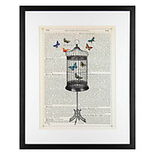 Buy Mariocn McConaghie - Bird Cage Framed Print, 54 x 44cm Online at johnlewis.com