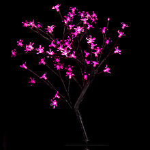 Buy John Lewis Outdoor Blossom Tree, Small Online at johnlewis.com