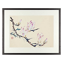 Buy Jane Dwight - Magnolia Framed Print, 40 x 50cm Online at johnlewis.com