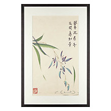 Buy Jane Dwight - Weeping Flower Framed Print, 40 x 60cm Online at johnlewis.com