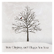 Buy Five Dollar Shake Robin In Tree Christmas Cards, Box of 5 Online at johnlewis.com