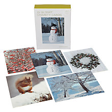 Buy John Lewis Bumper Photographic Charity Christmas Cards, Box of 25 Online at johnlewis.com