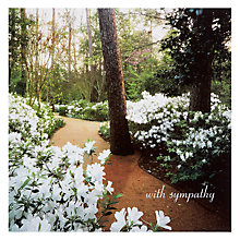 Buy Woodmansterne Woodland With Flowers Sympathy Greeting Card Online at johnlewis.com
