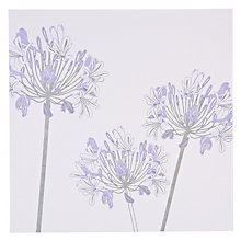 Buy The Art Rooms Agapanthus Greeting Card Online at johnlewis.com