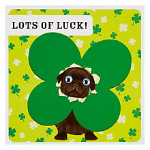 Buy Froot Loop Lucky Pug Card Online at johnlewis.com