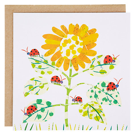 Buy Art Press Ladybirds on Flower Greeting Card Online at johnlewis.com