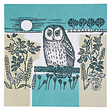 Buy Art Beat Night Owl Greeting Card Online at johnlewis.com