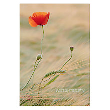 Buy Woodmansterne Poppy In Field Sympathy Card Online at johnlewis.com