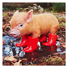 Buy Paperhouse Piglet In Boots Greeting Card Online at johnlewis.com