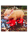 Paperhouse Piglet In Boots Greeting Card