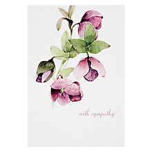 Buy Woodmansterne Hellebore Sympathy Card Online at johnlewis.com