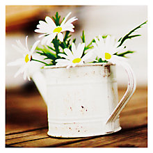 Buy Woodmansterne Daisies In Watering Can Thank You Card Online at johnlewis.com