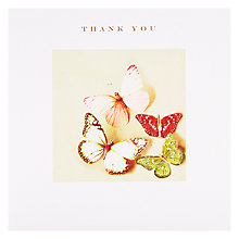 Buy Susan O'Hanlon Butterflies Thank You Card Online at johnlewis.com