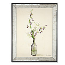 Buy Adelene Fletcher - Amethyst Orchid Framed Print, 45 x 35cm Online at johnlewis.com