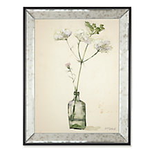 Buy Adelene Fletcher - Wild Parsnip Framed Print, 45 x 35cm Online at johnlewis.com