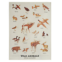 Buy Wild Animals Tea Towel Online at johnlewis.com
