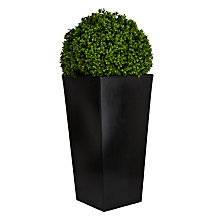 Buy Boxwood Grass Ball in Granite Planter, Large Online at johnlewis.com
