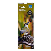 Buy RSPB Birds Slim 2014 Calendar Online at johnlewis.com