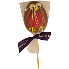 Buy James Chocolates Robin Lolly, 35g Online at johnlewis.com