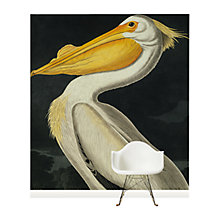Buy Surface View American White Pelican Wall Mural, 240 x 265cm Online at johnlewis.com