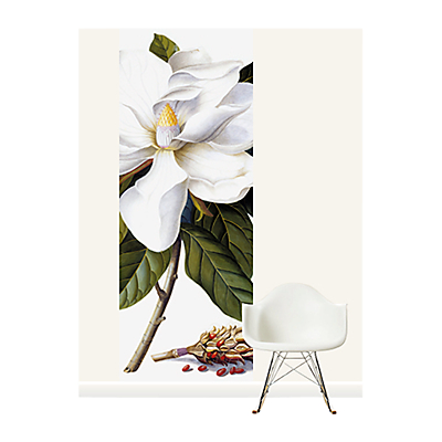 Surface View Bull Bay Wall Mural, 100 x 265cm