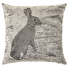 Buy John Lewis Croft Collection Hare Cushion Online at johnlewis.com