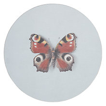 Buy John Lewis Avenida Butterfly Coaster Online at johnlewis.com