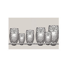 Buy Cole & Son Nottambule Frieze Wallpaper Online at johnlewis.com
