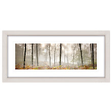 Buy Mike Shepherd - Morning Woodland Framed Print, 52 x 107cm Online at johnlewis.com