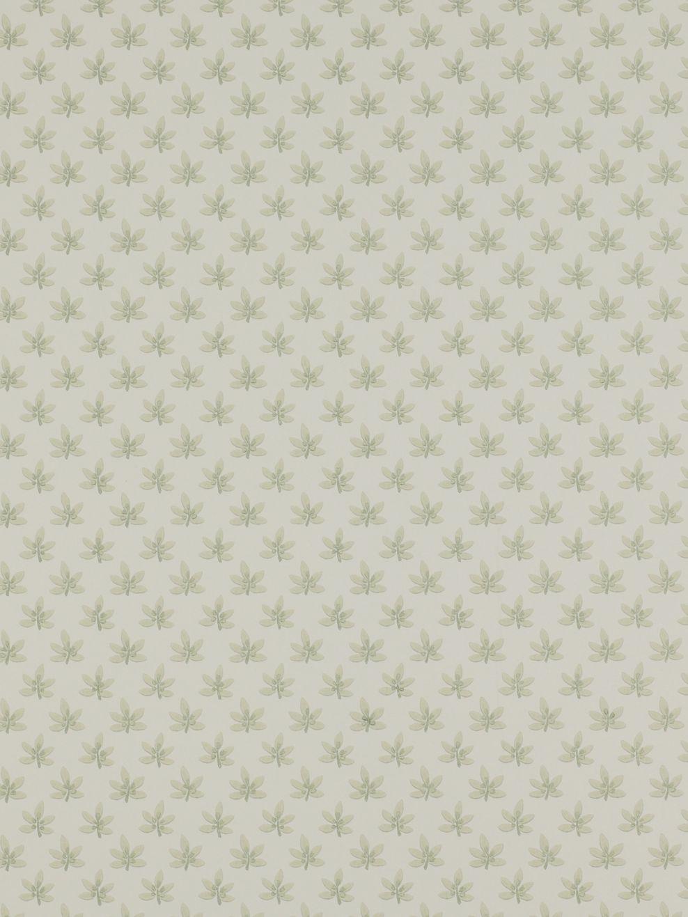 Colefax & Fowler Colefax & Fowler Maple Wallpaper