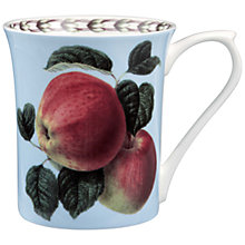 Buy RHS Hooker's Fruit Apple Mug Online at johnlewis.com