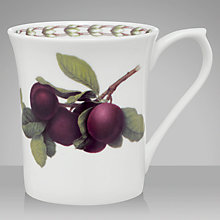 Buy RHS Hooker's Fruit Plum Mug Online at johnlewis.com