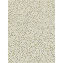 Buy Sanderson Home Ocelli Paste the Wall Wallpaper Online at johnlewis.com