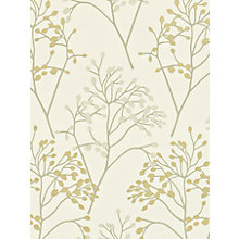 Buy Sanderson Home Pippin Paste the Wall Wallpaper Online at johnlewis.com