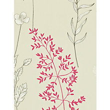 Buy Sanderson Home Summer Meadow Paste the Wall Wallpaper Online at johnlewis.com