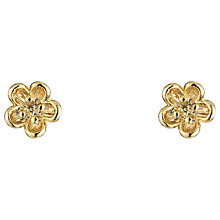 Buy Estella Bartlett Mini Wildflower Stud Earrings, Gold Online at johnlewis.com