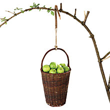 Buy Fallen Fruits Wicker Apple Basket Online at johnlewis.com