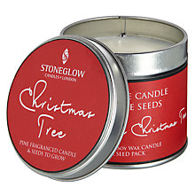 Buy Stoneglow Grow Your Own Christmas Tree Candle and Seeds Online at johnlewis.com
