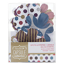 Buy Docrafts Papermania Capsule Collection Spots and Stripes Jewels Big Bloomers, Pack of 32 Online at johnlewis.com