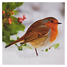 Buy Paperhouse Robin And Holly Christmas Card Online at johnlewis.com