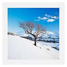 Buy PJF Photography Glowing Tree Christmas Card Online at johnlewis.com